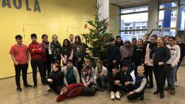 Unser Weihnachtsbaum steht!